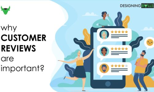 Importance of 'online customer reviews' for your website