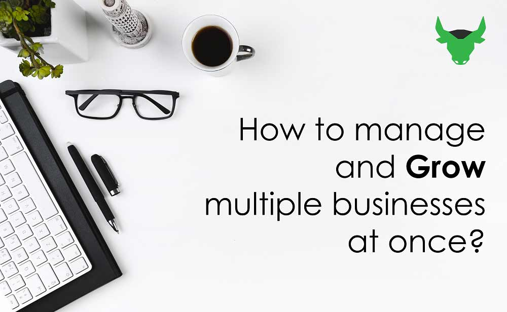 How To Manage And Grow Multiple Businesses At Once?