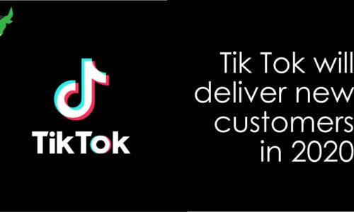 Tiktok Will Deliver New Customers In 2020!