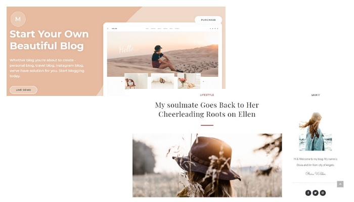 Malina, 5  Best WordPress Themes in Your Budget